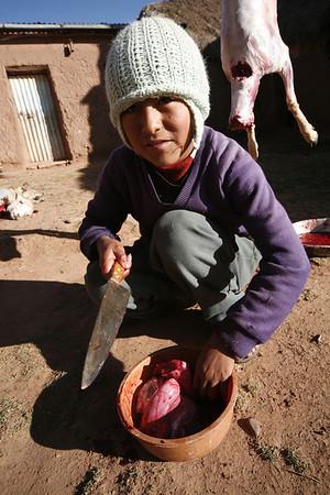 Luis the Butcher, 2007.